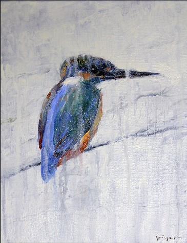 Common Kingfisher Jacques Gregoire