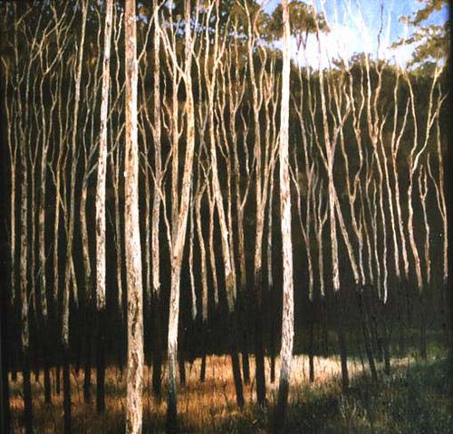 paperbarktrees olieverf op doek door Jacques Gregoire