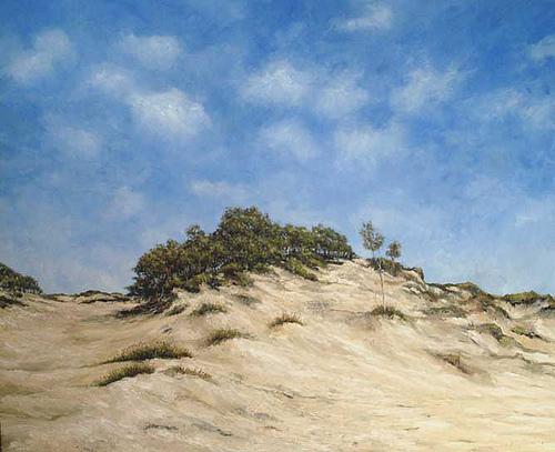 Duinlandschap, olieverf op doek , Jacques Gregoire