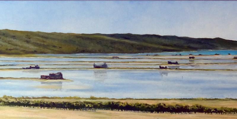 2013 zoutvlaktes Parecag 50 x 190